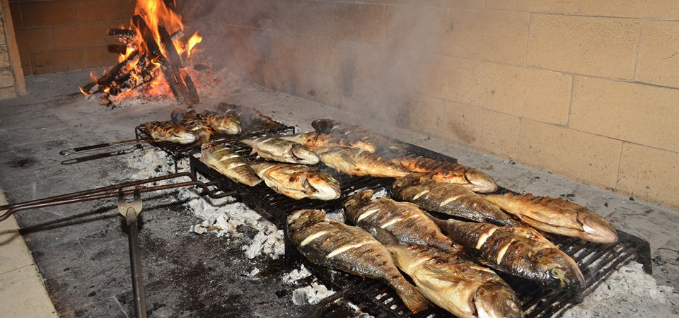 Fish on the grill